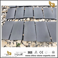 Hainan Black/Dark Grey Basalt Basalt Tiles for Paving,Exterior Stepping Garden Stone