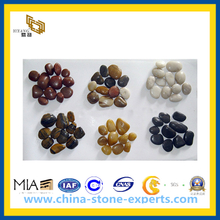Wholesale Natural River Cobble Stone, Pebble for Garden Paving (YQG-CS1047)