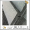 China Light Grey Granite Steps for Landscape with low cost