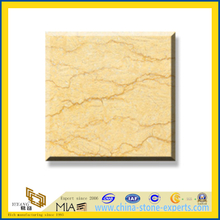 Silvia Marble Slabs for Wall and Flooring(YQC)