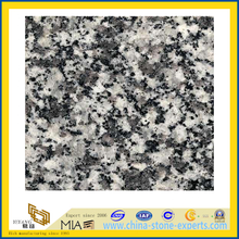 Polished G435 Granite Slabs (YQZ-G1012)
