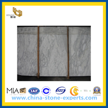 Arabescato Marble Slab for Tiles and Countertop for Kithchen / Bathroom(YQC)