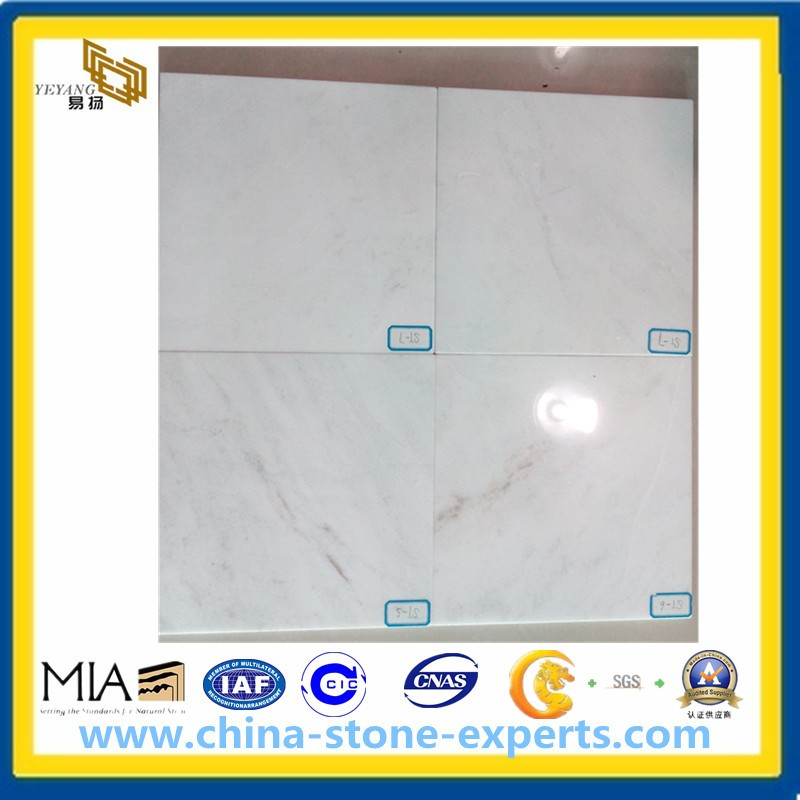Polished Glorious White Marble Tiles for Floor and Wall (YYAZ)