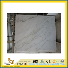 Natural Polished Bianco Carrara White Marble Tile for Wall/Flooring (YQC)
