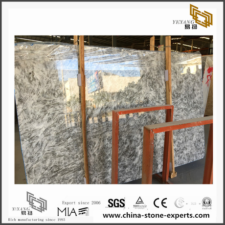 New Alpinus White Marble for Wall Backgrounds & Floor Tiles(YQN-091301)