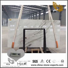 Natural Arabescato Venato White Marble for Countertop with Cheap Cost(YQW-MSA070608)