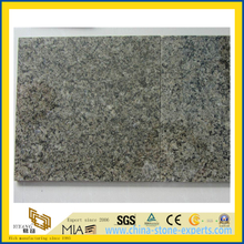 Polished Chengde Green Granite Tiles for Interior Flooring