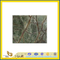 Polished Natural Rain Forest Green Marble Slabs for Countertop/Vanitytop (YQC)