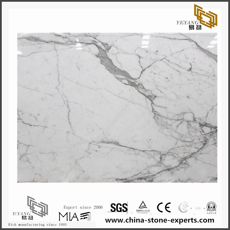 Custom Arabescato White Marble for Wall Backgrounds & Floor Tiles (YQN-092603)