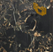 Grade A Quality Portoro Gold Marble for Kitchen,Bathroom Background(YQN-101201)