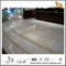 Aristone Marble floor/wall for interior design(YQN-091401)