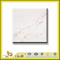 Polished Ariston White Marble Slabs for Wall&Flooring (YQC)