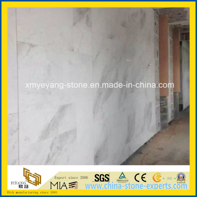 Castro White Marble Building Material for Construction Floor / Wall Decoration
