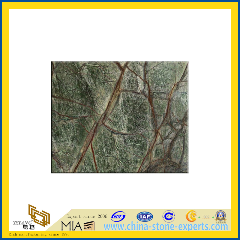 Rain Forest Green Marble Slab/ Tile(YQC)