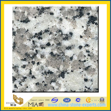 Polished Cinderella Granite Slabs for Wall Tile / Countertops (YQZ-G1007)